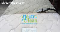 Lavado orgánico de colchones y muebles a