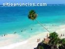 negocios riviera maya