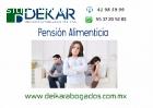 Pensión Alimenticia DF y Estado deMéxico