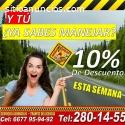 Pide tu curso en Autoescuela Culiacán
