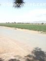 Se vende rancho en Abasolo Gto.