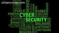 Servicio De Seguridad Informatica WEB