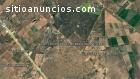 19 HAS. San Luis de La Paz, Gto.