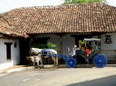 Spanish Language Courses Nicaragua