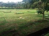 lote en Jardín de Paz - 10 mts2