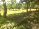 Venta de Terreno en Cabuya