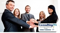 CONSULTORA PARA PYMES - CONSULTING PRO