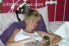 Adorable bebé monos  capuchinos