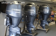 Motor fueraborda motor Mercury, Yamaha,