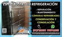 Reparacion Camaras Frigorificas 7256381