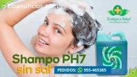 Shampoo ecologico natural