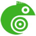 Triico - Diseño de Paginas Web y Seo en