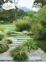 jardineria y paisajismo, plantas,