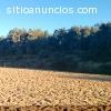 Campo Con Playa Instalaciones Uso variad