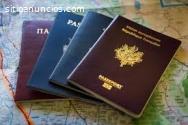 Compre pasaportes falsos, licencia de co