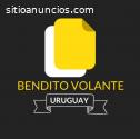 Reparto De Volantes Uruguay