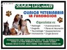 EMERGENCIAS VETERINARIAS 24 HORAS