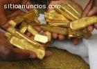 450 kg de lingotes de oro y polvo