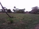 Finca en Guanarito