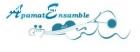 Grupo Musical ApamatEnsamble